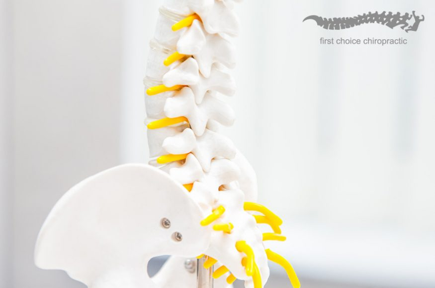 First Choice Chiropractic A Guide to Spinal Decompression